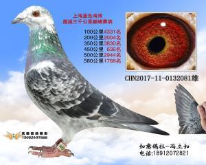 CHN2017-11-0132081