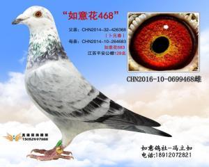 CHN2016-10-0699468