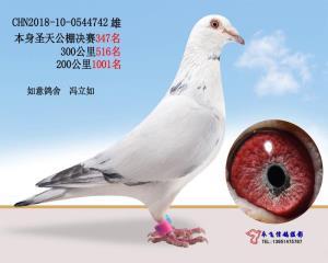CHN2018-10-0544742