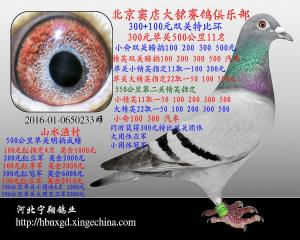 北京强豪山水渔村【已售】