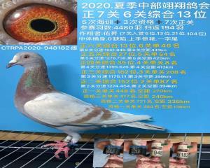 2020夏季中部翊翔正7关、六关综合13名